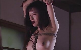 Scheduled up Japanese babe gets fucked unconnected with the brush kinky lover. HD video